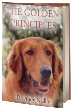 The Golden Principles