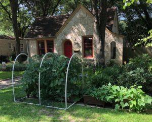 House in Austin